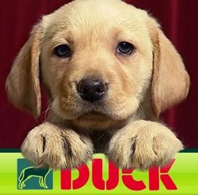 duck natuurvoeding gratis pakket